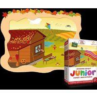 Akademia umysłu junior. Jesień. DVD - produkt z kategorii- Pozostałe gry i konsole