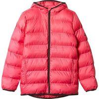 Kurtka adidas Synthetic Down Youth Girls Back To School Jacket Junior AY6787, kolor różowy