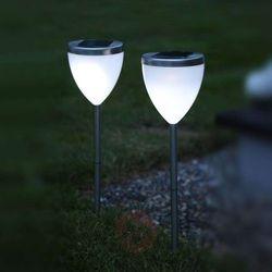 Dekoracyjna lampa solarna LED Jannik 2 sztuki (7391482477354)