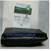 Agrotkanina 100 g/m2, 3,2 x 10 mb. Paczka, AGROTKANINA 100/320/10 paczka