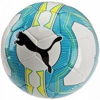 Piłka nożna Puma evoPOWER 4 Futsal 08256701 izimarket.pl