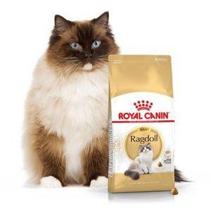 Royal canin ragdoll adult 10kg | darmowa dostawa - 10000 (3182550825375)