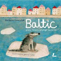 Baltic. Pies, który płynął na krze