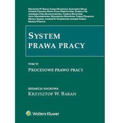System prawa pracy Tom 6 - Krzysztof Baran (kategoria: Prawo, akty prawne)