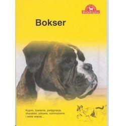 Bokser Praca zbiorowa (kategoria: Książki sportowe)