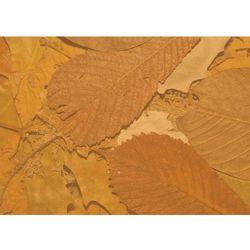 Tablica magnetyczna suchościeralna liście 159 marki Wally - piękno dekoracji