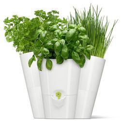 Doniczka na zioła potrójna biała Fresh Herbs by Emsa (doniczka i podstawka) od ExitoDesign