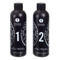 Shunga (can) Shunga - strawberry & champagne massage gel 2 x 250 ml