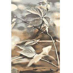 Agnella Dywan natural ramo beż 133x190