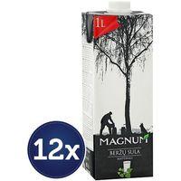 MAGNUM 12x1l Sok z brzozy naturalny lekko słodzony litewski | DARMOWA DOSTAWA OD 150 ZŁ! - sprawdź w wybran