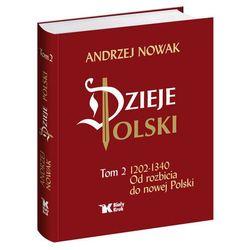 Dzieje Polski Od rozbicia do nowej Polski Tom 2 - Wysyłka od 3,99 - porównuj ceny z wysyłką (ilość stron