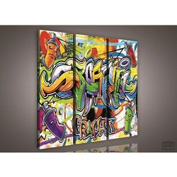 Consalnet Obraz kolorowe graffiti ps613s6