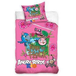 4home Tip trade pościel bawełniana angry birds rio stella, 140 x 200 cm, 70 x 80 cm