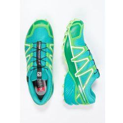Salomon SPEEDCROSS 4 GTX Obuwie do biegania Szlak teal blue/peppermint/fresh green - produkt z kategorii- obuw