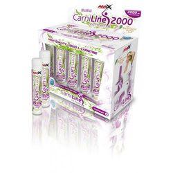 Redukcja wagi Amix CarniLine ® Pro Fitness 2000 amp. - sprawdź w wybranym sklepie