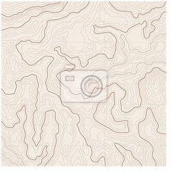 Fototapeta tło mapa topograficzna, marki Myloview