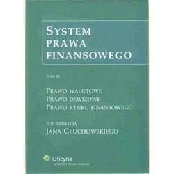 System prawa finansowego. Tom IV, rok wydania (2009)
