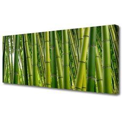 Tulup.pl Obraz canvas bambusowy las pędy bambusa