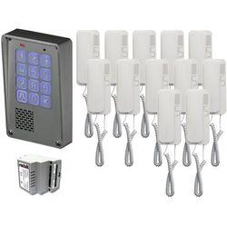 Radbit Zestaw 12-rodzinny cyfrowy panel domofonowy wielorodzinny z szyfratorem kec-4 nt mini gd36