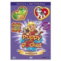 Puppy in my pocket - Urodziny Flo