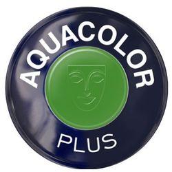 aquacolor plus (green) farba do makijażu ciała - green (1102), marki Kryolan
