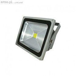 Naświetlacz LED Kanta 50 50W 230V 6000K 110 st. COB IP65 zimna biel kolor srebrny CRILLAR (świetlówka) od ERNO.PL - pod prąd ...