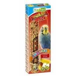 kolba papuga mała owocowa, marki Nestor