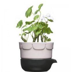 Ceramiczna doniczka z podkładka różowa Herbs & Spices Sagaform - sprawdź w hani.pl
