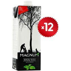 Magnum  12x1l sok z brzozy o smaku mięty litewski | darmowa dostawa od 200 zł