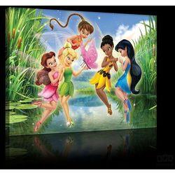 Consalnet Obraz disney fairies: tinker bell, iridessa ppd29