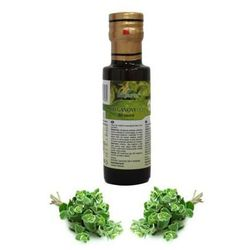Olejek z oregano bio 250ml, marki 1
