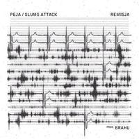 Peja / Slums Attack - Remisja (5902689720321)