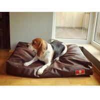 Poduszka dla psa pillow marki E-doggy