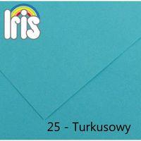 Brystol  iris b1/240g turkusowy 25ark. marki Canson