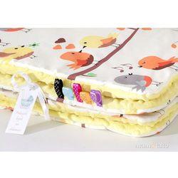 komplet kocyk minky do wózka + poduszka ptaszki kremowe / żółty marki Mamo-tato