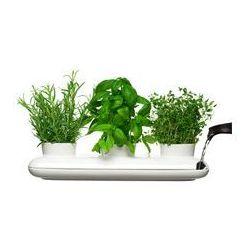 Potrójna doniczka na zioła (biała)  marki Sagaform