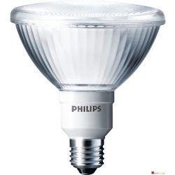 Philips Downlighter - sprawdź w wybranym sklepie
