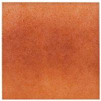 Paradyż  aquarius brown klinkier płytka bazowa 30x30 (5900139020403)