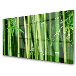 Obraz szklany las bambusowy bambus natura marki Tulup.pl