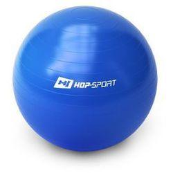 Piłka gimnastyczna Gym Ball 65 cm + pompka - niebieski