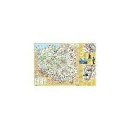 Demart Mapa polski junior dla dzieci - plansza edukacyjna na ścianę i biurko (9788379123902)