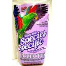 - Eclectus Special 1,36 kg, Pretty Bird