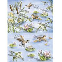 Papier ryżowy Decomania 35x50 cm - 5011