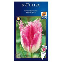 Tulipany (8711148316121)