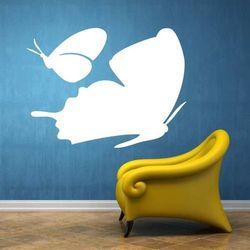 Tablica suchościeralna 032 motyle marki Deco-strefa – dekoracje w dobrym stylu