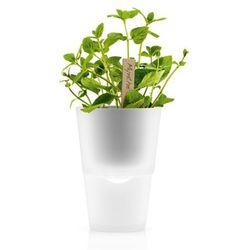 Doniczka na zioła 11 cm mrożone szkło marki Eva solo
