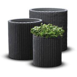 Curver Zestaw doniczek s+m+l cylinder planter + darmowy transport! (7290106920453)