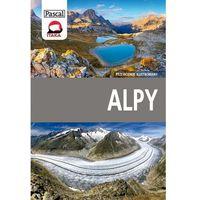 Alpy przewodnik ilustrowany - Wysyłka od 4,99 - porównuj ceny z wysyłką (9788376424842)