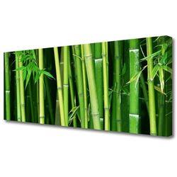 Obraz Canvas Las Bambusowy Bambus Natura