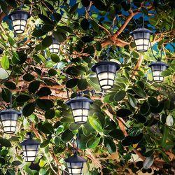 Solarny łańcuch świetlny LED Asia Style